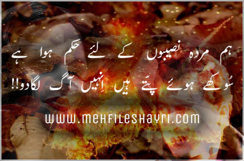 Hum Murdah Naseeb